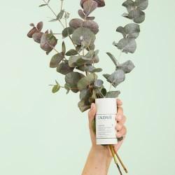 Caudalie - Caudalie Vinofresh Desodorante Natural 50ml - Farmacia Sarasketa
