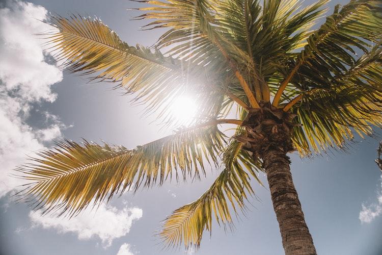 ¿After sun o Crema Hidratante? - Blog - Farmacia Sarasketa